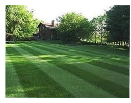 Spring landscape design, maintenance, and installation services | Hamden, CT